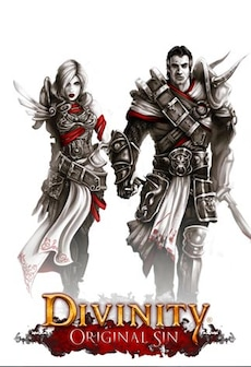 Divinity: Original Sin (POLISH ONLY) Steam Gift GLOBAL фото