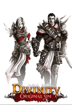 Divinity: Original Sin - Enhanced Edition Collector's Edition Steam Gift GLOBAL