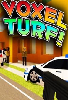 voxel turf steam key global