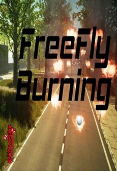 FreeFly Burning Steam Key GLOBAL