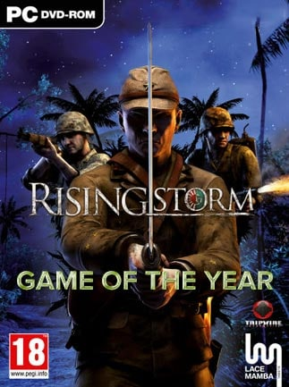 Rising Storm: Game of the Year Edition Steam Key GLOBAL