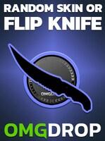 Counter-Strike: Global Offensive RANDOM SKIN OR FLIP KNIFE CASE CODE BY OMGDROP.COM