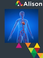 Introduction to the Cardiovascular System Alison Course GLOBAL - Digital Certificate