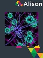 Introduction to Immunology Alison Course GLOBAL - Digital Certificate