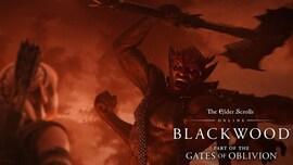 The Elder Scrolls Online Collection: Blackwood (PC) - TESO Key - GLOBAL