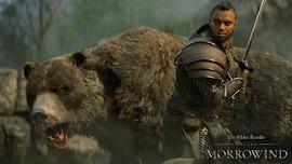 The Elder Scrolls Online + Morrowind Upgrade (PC) - TESO Key - GLOBAL