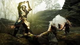 Warhammer: Vermintide 2 - Grail Knight Career (PC) - Steam Gift - JAPAN