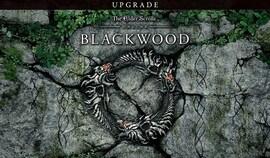 The Elder Scrolls Online: Blackwood UPGRADE (PC) - Steam Gift - GLOBAL