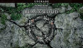 The Elder Scrolls Online: Blackwood UPGRADE (PC) - TESO Key - GLOBAL