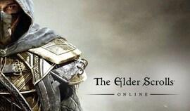 The Elder Scrolls Online Steam Key GLOBAL