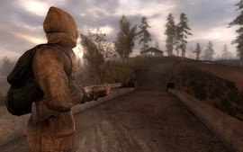 S.T.A.L.K.E.R. Call of Pripyat Steam Gift EUROPE