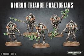 Necron Triarch Praetorians / Lychguard