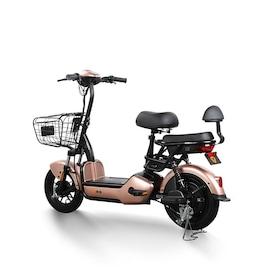 2021 Yadeax Electric Assist Bicycle E Bike 48v12ah Lead Acid Battery Wangzi 3c Brown