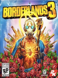 BORDERLANDS  RANDOM KEY