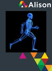 Introduction to the Human Skeletal System Alison Course GLOBAL - Digital Certificate