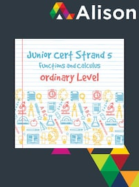 Junior Certificate Strand 5 - Ordinary Level - Functions and Calculus Alison Course GLOBAL - Digital Certificate