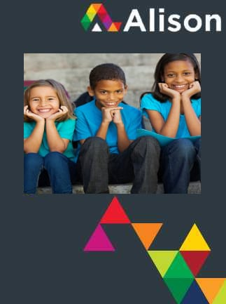 Fundamentals of Childhood and Youth Studies Alison Course GLOBAL - Digital Certificate - box