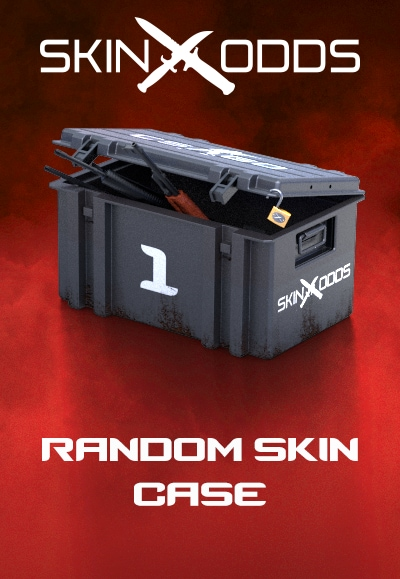 Counter-Strike: Global Offensive RANDOM SKIN by SKINODDS.COM Key - box