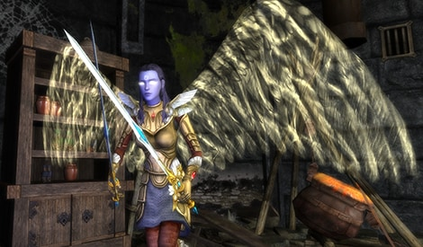 Dungeons & Dragons Online: Mists of Ravenloft - Standard