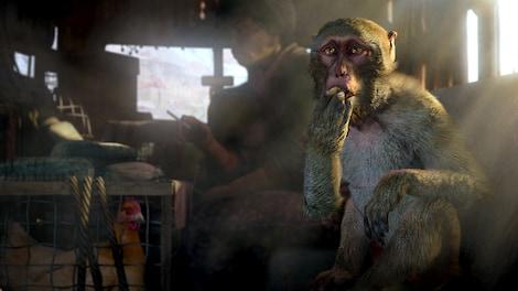Far Cry 4 Uplay Key GLOBAL - gameplay - 13