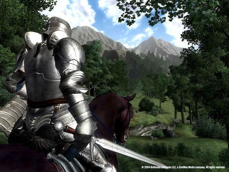 The Elder Scrolls IV: Oblivion Game of the Year Edition Deluxe Steam Key GLOBAL - gameplay - 6