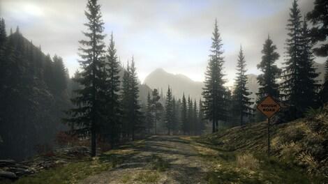 Alan Wake Collector's Edition Steam Key GLOBAL - rozgrywka - 6