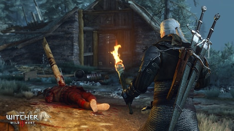 The Witcher 3: Wild Hunt GOG.COM Key GLOBAL - gameplay - 15