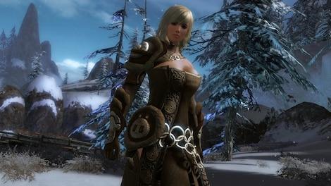 Guild Wars 2 Heroic Edition NCSoft Key GLOBAL - rozgrywka - 12