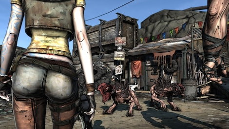 Borderlands and DLCs: The Zombie Island of Dr. Ned + Mad Moxxi's Underdome Riot + The Secret Armory of General Knoxx Steam Key GLOBAL - screenshot - 4