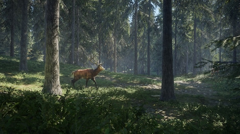 theHunter: Call of the Wild Steam Key GLOBAL - gameplay - 7