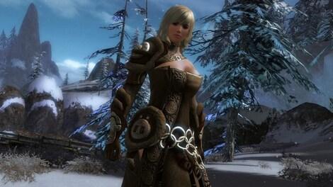 Guild Wars 2 Heroic Edition NCSoft Key GLOBAL - rozgrywka - 13