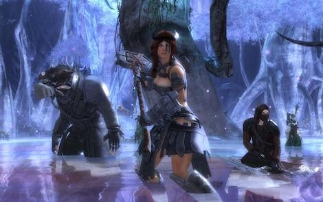 Guild Wars 2 Heroic Edition NCSoft Key GLOBAL - rozgrywka - 6