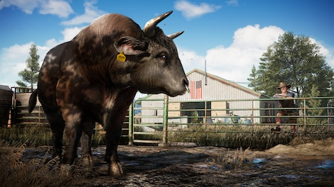Far Cry 5 Uplay Key EUROPE - gameplay - 6