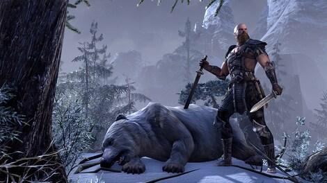 The Elder Scrolls Online: Tamriel Unlimited Imperial Edition The Elder Scrolls Online Key GLOBAL - gameplay - 2