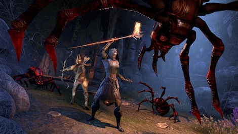 The Elder Scrolls Online: Summerset Upgrade The Elder Scrolls Online Key GLOBAL - screenshot - 8