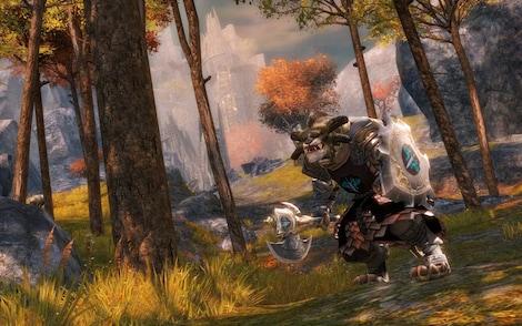 Guild Wars 2 Heroic Edition NCSoft Key GLOBAL - rozgrywka - 8