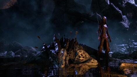The Elder Scrolls Online: Tamriel Unlimited Imperial Edition The Elder Scrolls Online Key GLOBAL - gameplay - 4