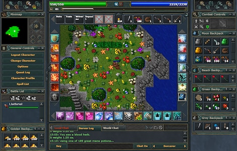 Tibia PACC Premium Time Cipsoft GLOBAL 30 Days Code - screenshot - 5