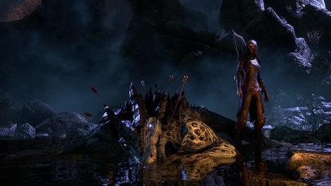 The Elder Scrolls Online: Tamriel Unlimited Imperial Edition The Elder Scrolls Online Key GLOBAL - gameplay - 22