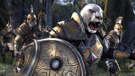 The Elder Scrolls Online: Tamriel Unlimited Imperial Edition The Elder Scrolls Online Key GLOBAL - gameplay - 17