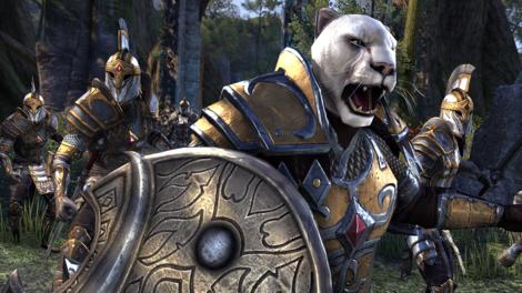 The Elder Scrolls Online: Tamriel Unlimited Imperial Edition The Elder Scrolls Online Key GLOBAL - gameplay - 10