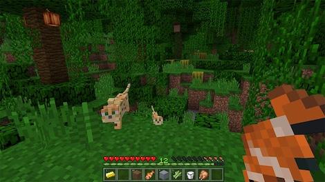 Minecraft: Windows 10 Edition Microsoft Key GLOBAL - ゲームプレイ - 10