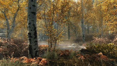 The Elder Scrolls V: Skyrim Special Edition Steam Key GLOBAL - ゲームプレイ - 6