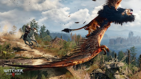 The Witcher 3: Wild Hunt GOG.COM Key GLOBAL - gameplay - 6