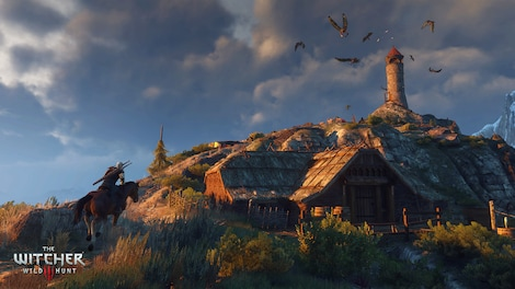 The Witcher 3: Wild Hunt GOG.COM Key GLOBAL - gameplay - 8