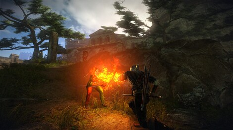 The Witcher 2 Assassins of Kings Enhanced Edition Steam Key GLOBAL - gameplay - 19