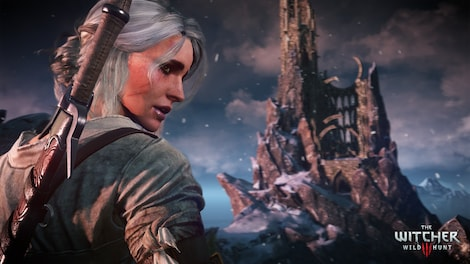 The Witcher 3: Wild Hunt GOG.COM Key GLOBAL - gameplay - 18