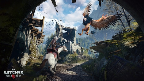 The Witcher 3: Wild Hunt GOG.COM Key GLOBAL - gameplay - 9
