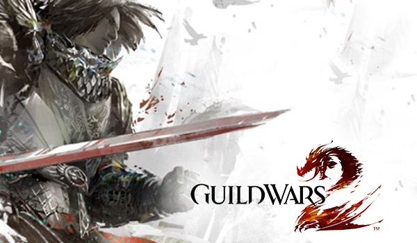 Guild Wars 2 Heroic Edition NCSoft Key GLOBAL