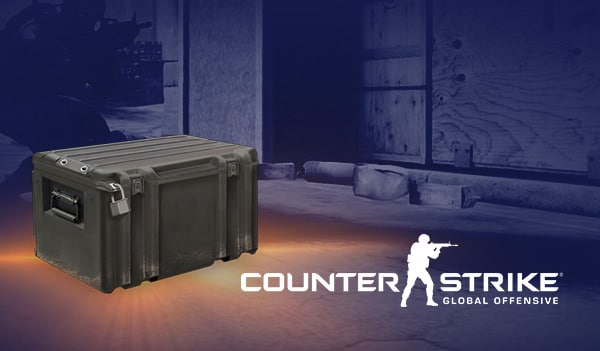 Counter-Strike: Global Offensive RANDOM SKIN by SKINODDS.COM Key